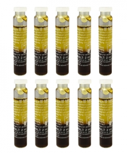 Art of Sun Golden Brown Melanin Öl 2 Phasen Solarium Ampulle 10 X 2 ml.